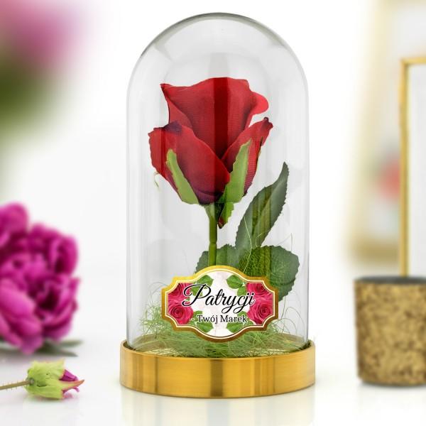 wieczna róża czerwona pod kloszem