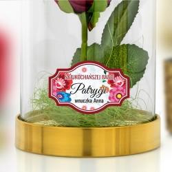 wieczna róża czerwona pod kloszem na prezent dla babci