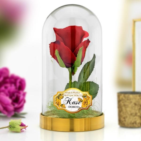 wieczna róża pod kloszem na prezent dla przyjaciółki