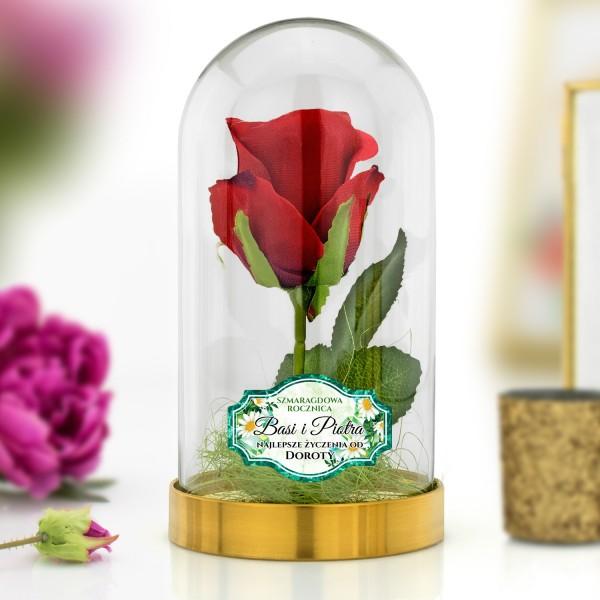 róża pod szklaną kopułą na prezent na szmaragdową rocznicę ślubu