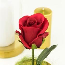 czerwona róża wieczna na prezent na rocznicę