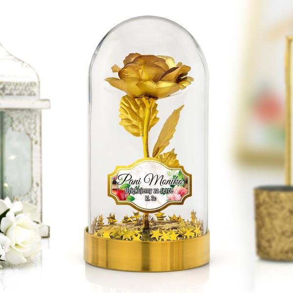 wieczna róża złota na prezent dla nauczycielki