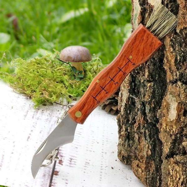 nóż składany dla grzybiarza