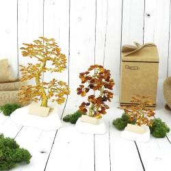drzewka szczęścia z dedykacją na prezent