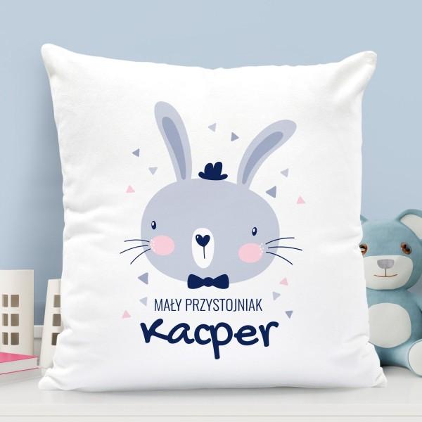 na prezent dla dziecka poduszka dla chłopczyka - Melonik i Mucha