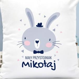 poduszka z nadrukiem imienia na prezent dla dla chłopczyka - Melonik i Mucha